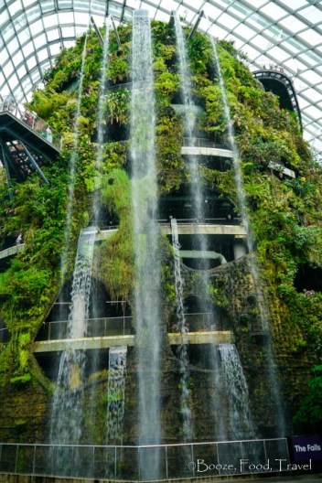 Waterfall in the Cloud Forest