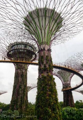 supertrees-walkway
