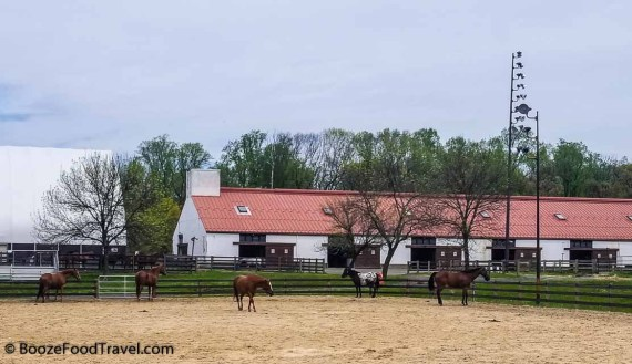 watchung stables