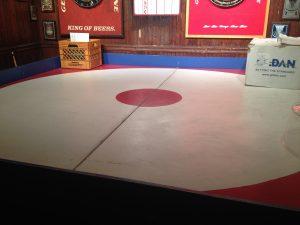 Big Joe's turtle arena