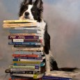 Those of us in Border Collies have long known that they're in a class by themselves in the arenas of intelligence, agility, drive, and trainability. They're different from other dogs […]