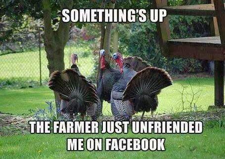 FarmerUnfriendedMe.jpg