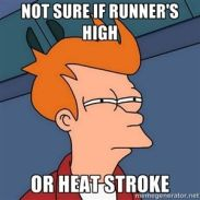 Runners-high-or-heat-stroke.jpg