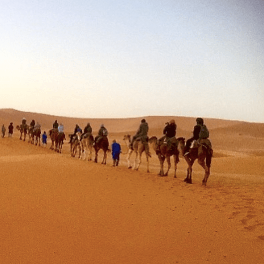 Moroccan Sandstorm Experience with Camels