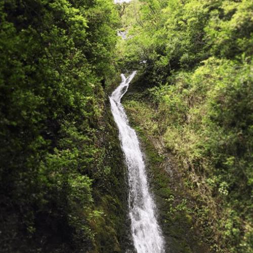 Hike to Lulumahu Falls