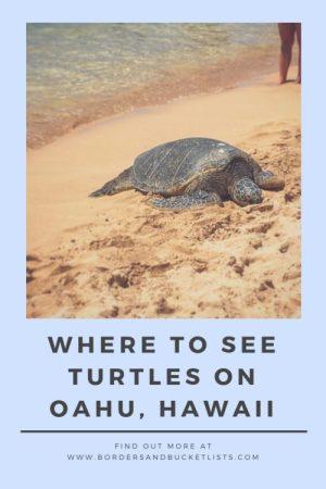 Where to See Turtles on Oahu, Hawaii Pin #oahu #turtles #honu #hawaii #hawaiisecrets