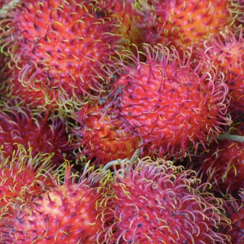 Discover a New Fruit in Chinatown