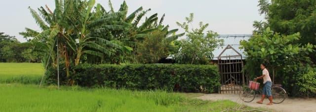 Mandalay countryside