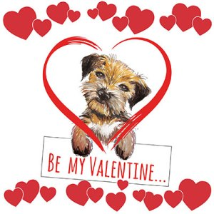 Border Terrier Valentine's Day Card