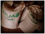 El Cacao de Chuao: Qué ViVa Qué ViVa..!!!