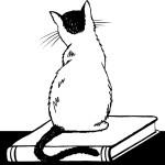 Pandemia con Gato
