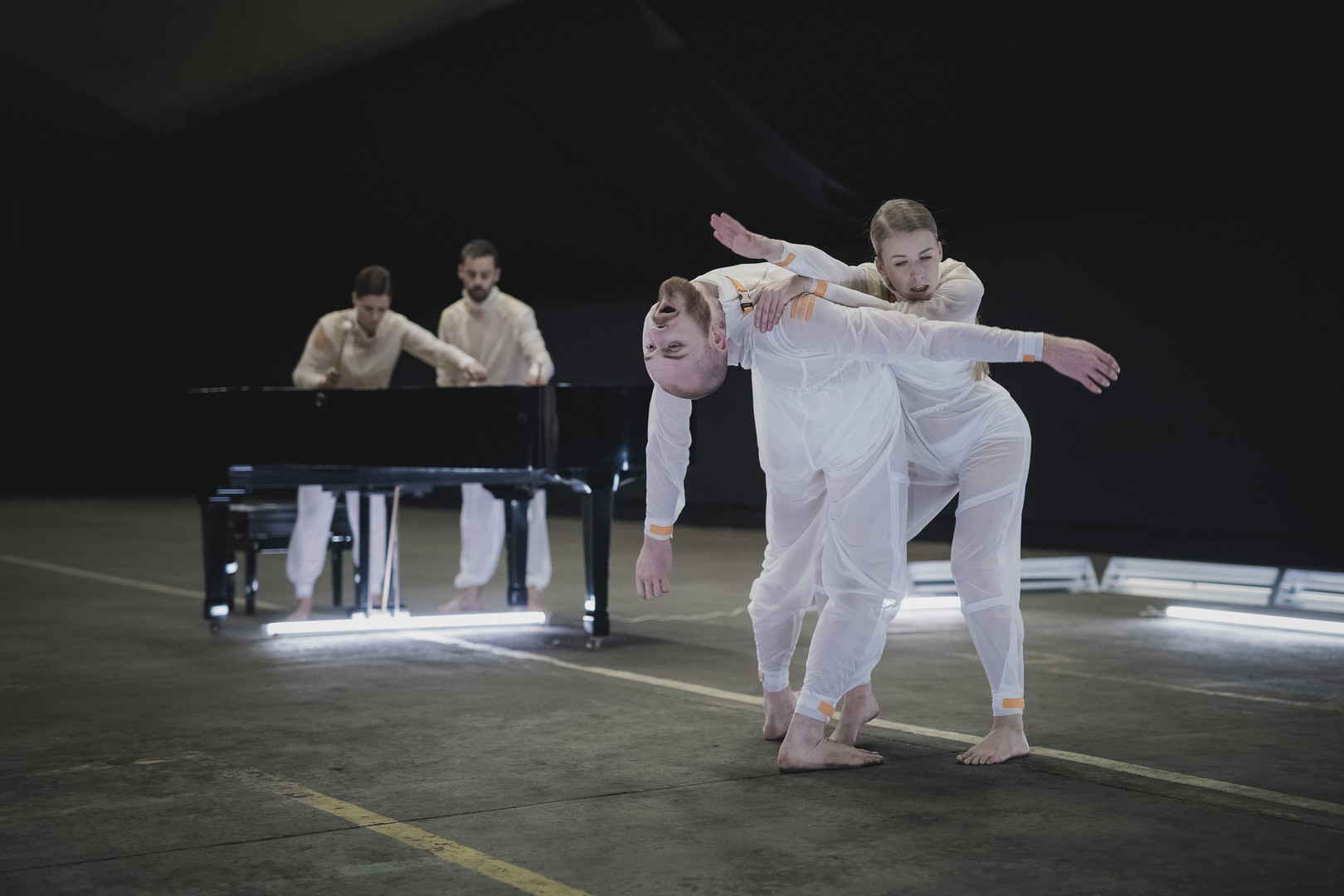 La Danza Cinéfaga