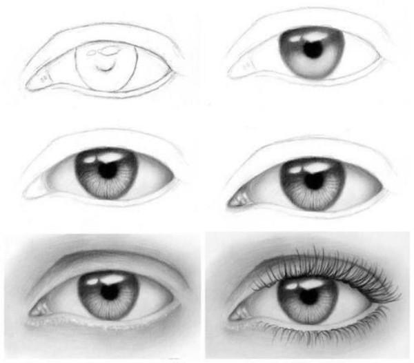 Eyes Pair Drawing Easy Realistic