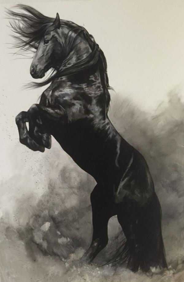 Head Drawings Easy Horse Beautiful