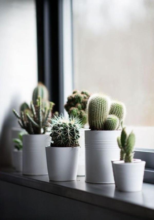 Small Flat Decoration Ideas