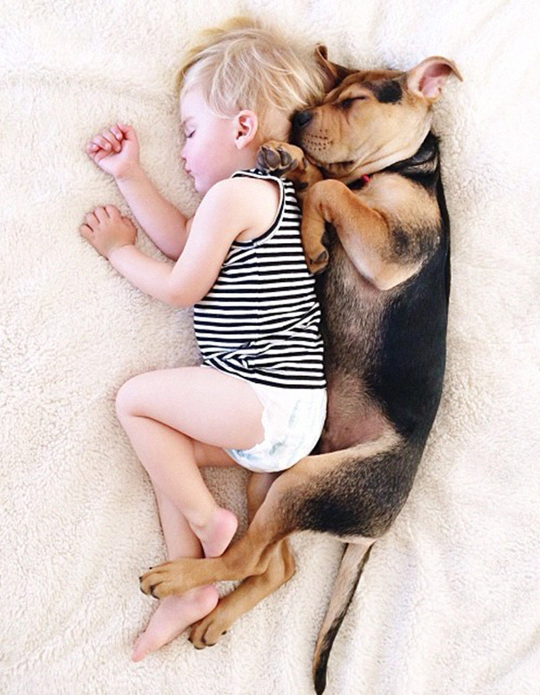 toddler-naps-with-puppy-theo-and-beau-2-13.jpg