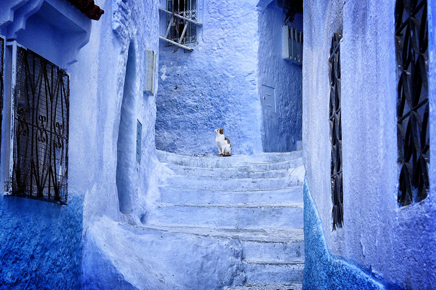 blue-streets-of-chefchaouen-morocco-4