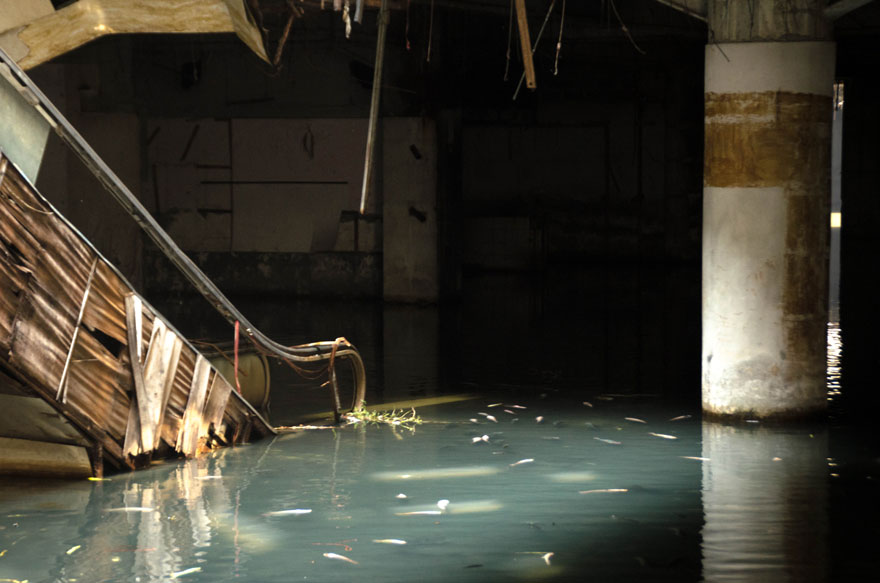 abandoned-shopping-mall-bangkok-fish-jesse-rockwell-3