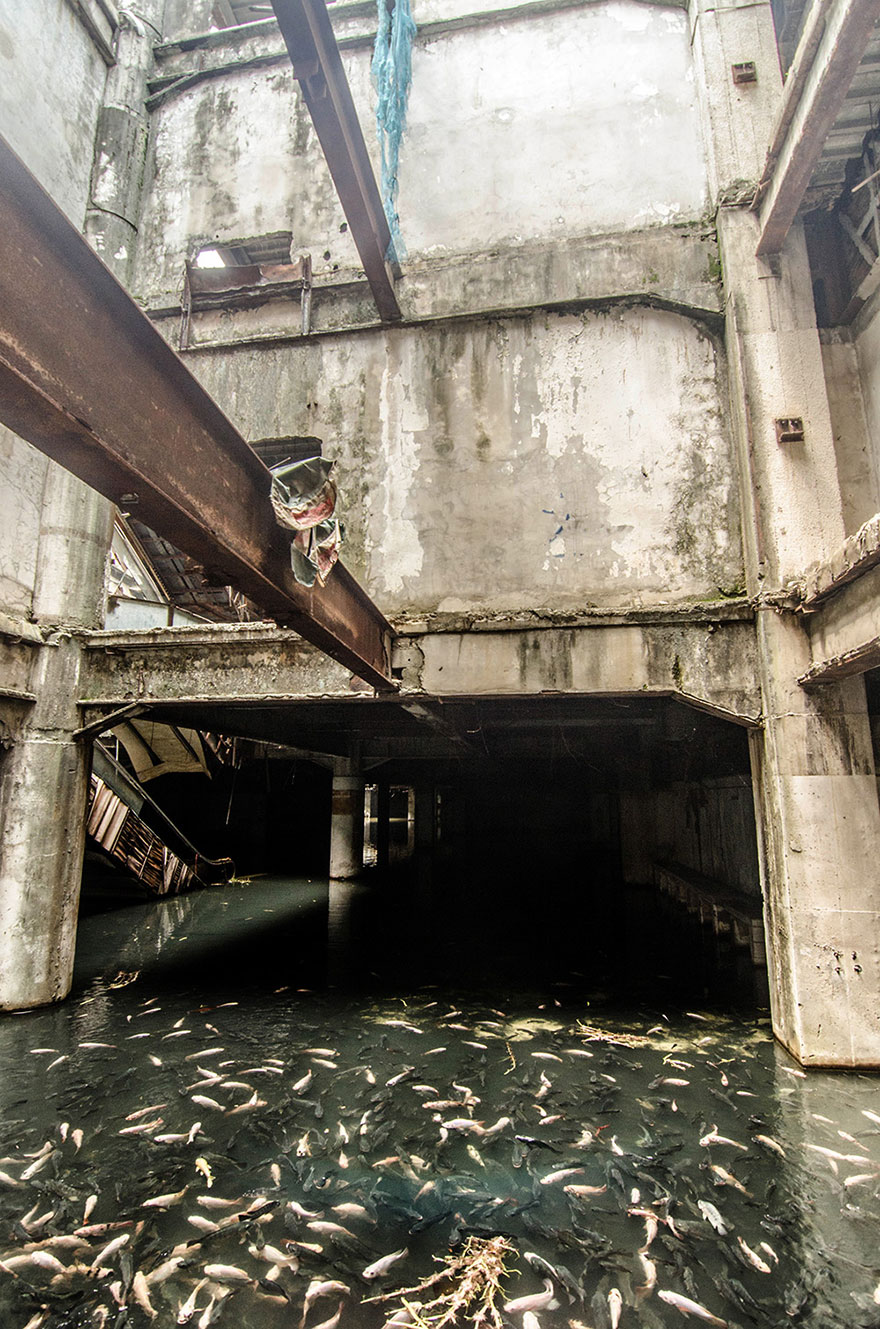 abandoned-shopping-mall-bangkok-fish-jesse-rockwell-8
