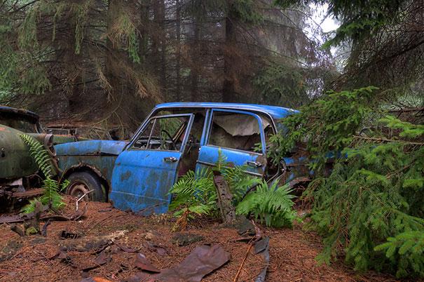 chatillon-car-graveyard-abandoned-cars-cemetery-belgium-5