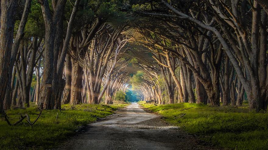 amazing-paths-26