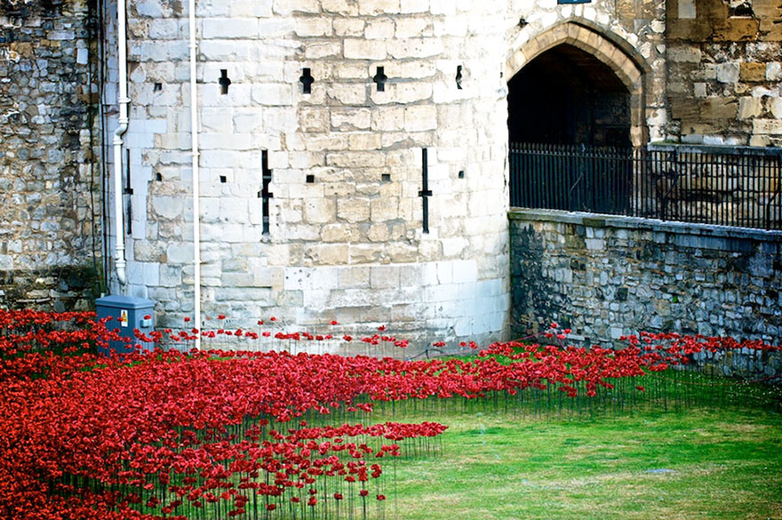 ceramic-poppies-first-world-war-installation-london-tower-6