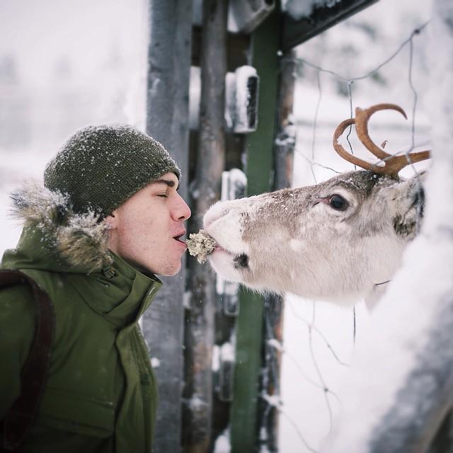 fotos-alimentando-animales-salvajes-finlandia-konsta-punkka (15)