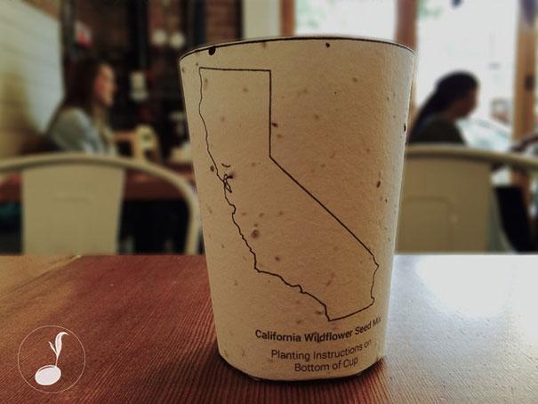vaso-cafe-biodegradable-plantable-reduce-reuse-grow (5)
