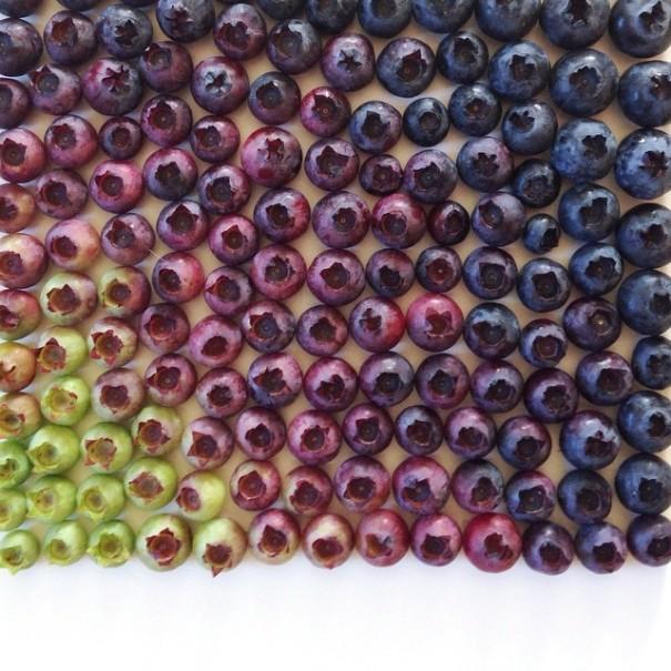 fotos-comida-ordenada-colores-foodgradients-brittany-wright (6)