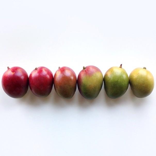 fotos-comida-ordenada-colores-foodgradients-brittany-wright (9)