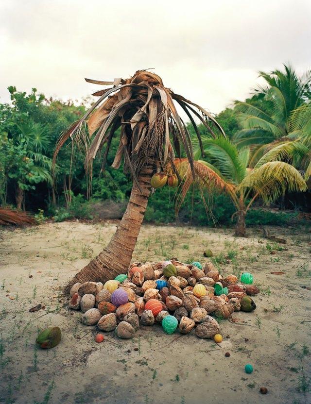 instalaciones-artisticas-basura-playa-sian-kaan-alejandro-duran-mexico (4)