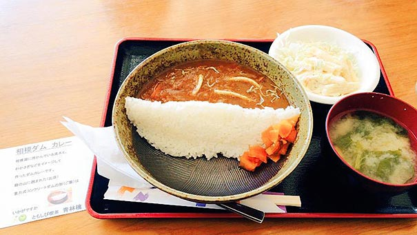 presa-arroz-curry-damukare-japon (5)