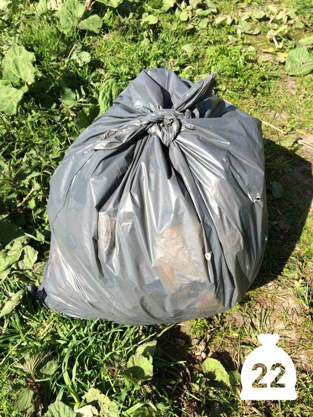 proyecto-recoger-basura-diariamente-pigswegetwhatpigsdeserve-holanda (17)