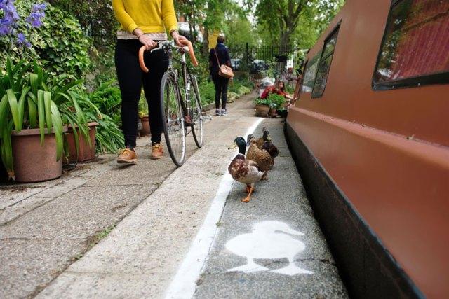 carril-camino-patos-sharethespace-londres (6)