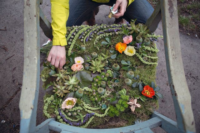 casa-abandonada-jardin-flores-lisa-waud-detroit (4)