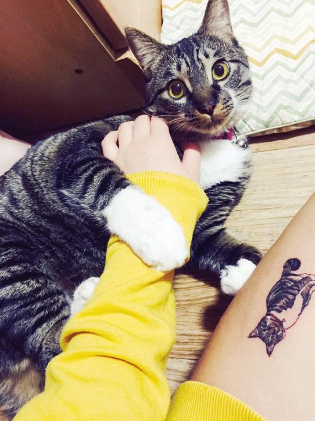 tatuajes-ilegales-gatos-tatuadores-clandestinos-corea-sur (6)