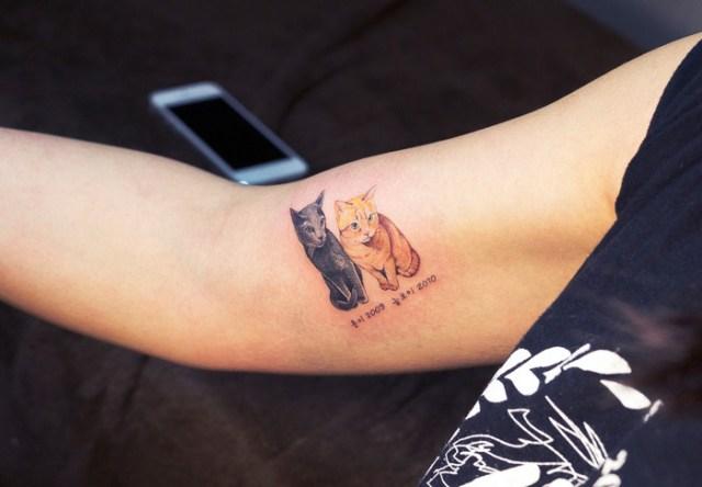 tatuajes-ilegales-gatos-tatuadores-clandestinos-corea-sur (8)