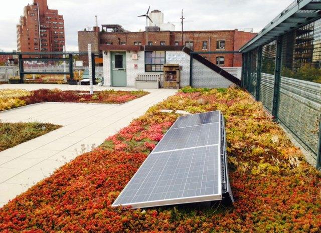 escuelas-publicas-nueva-york-paneles-solares (7)