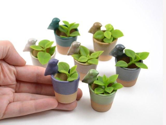 macetas-animales-ceramica-plantas-suculentas-priscilla-ramos (5)