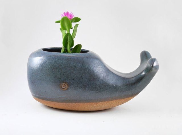 macetas-animales-ceramica-plantas-suculentas-priscilla-ramos (7)