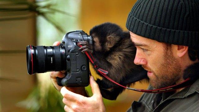 animales-camara-ayudando-fotografos (15)