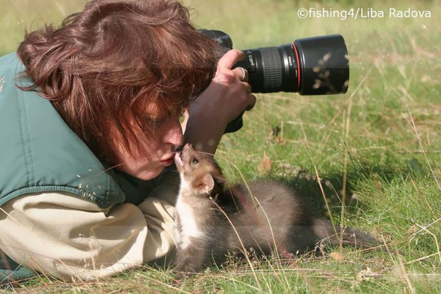 animales-camara-ayudando-fotografos (32)