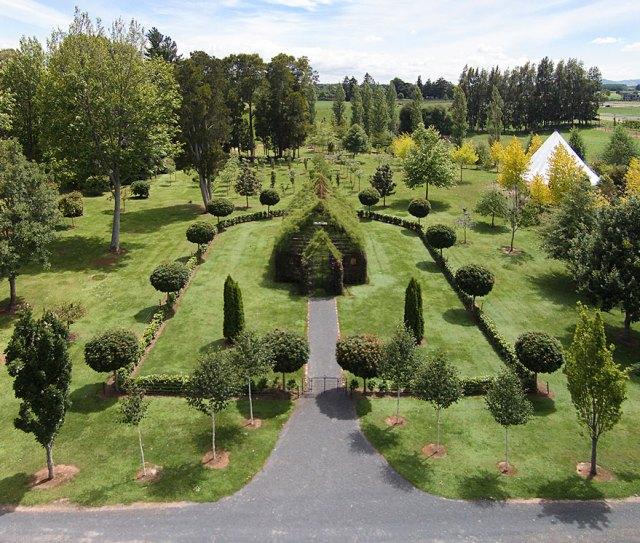 iglesia-arboles-barry-cox-nueva-zelanda (3)