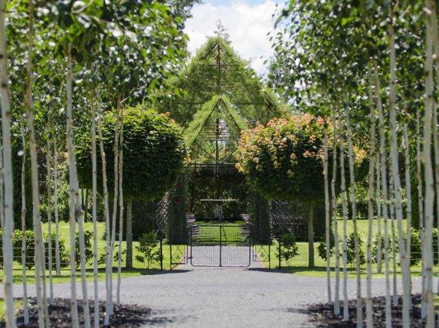 iglesia-arboles-barry-cox-nueva-zelanda (5)