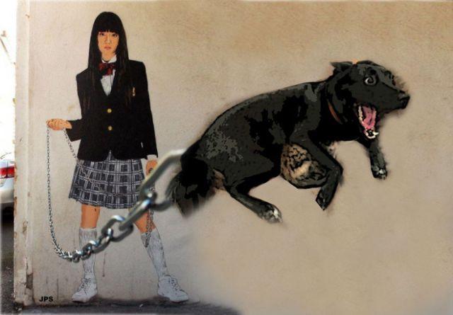 meme-internet-perro-emocionado-protegiendo-gato (2)