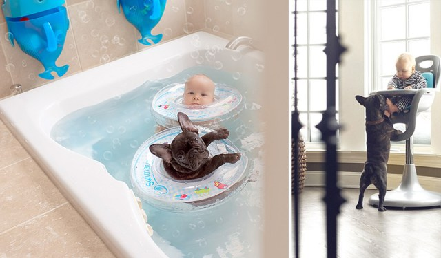 amistad-bebe-dilan-bulldog-farley-ivette-ivens (9)