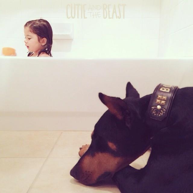 cutie-beast-nina-siena-perro-doberman-buddha (20)