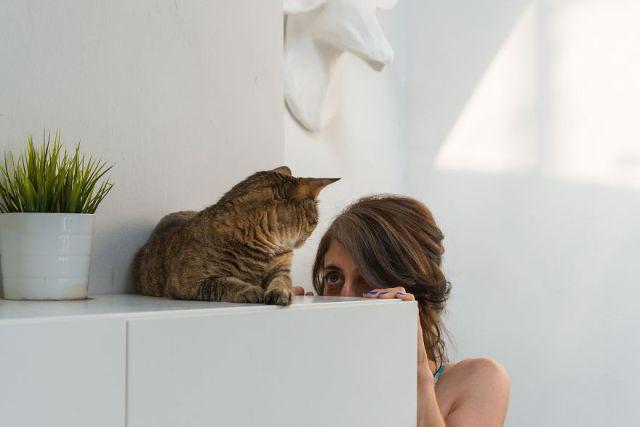 fotos-gatos-celebres-instagram-duenos-eeuu-meow-quarterly (8)