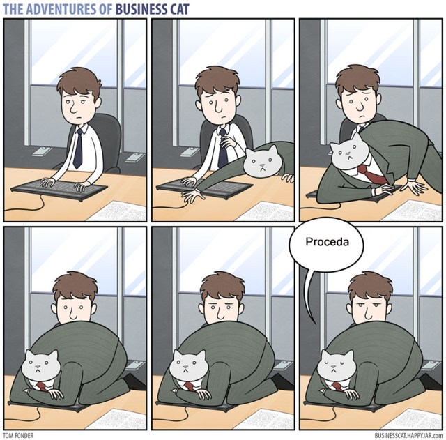 comic-aventuras-gato-negocios-tom-fonder-4