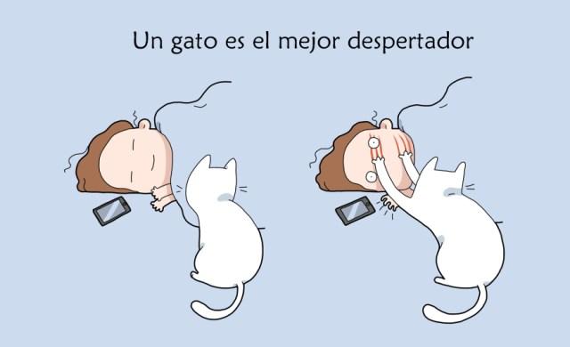 comics-convivir-gatos (1)